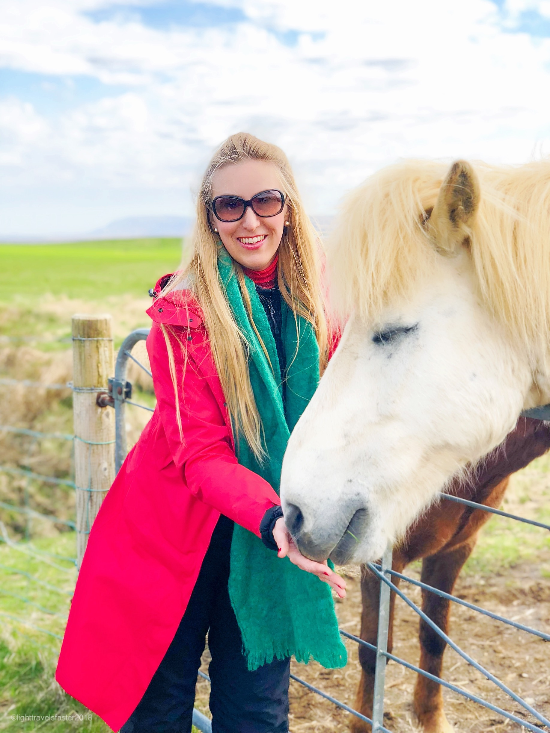 Roaming with Icelandic Horses